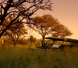 Are you ready to experience a bushveld paradise?